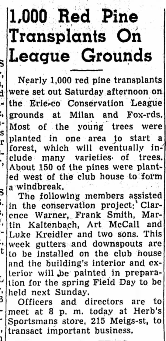 1000 Red pines Transplants. Luke Kreidler & his two sons May 12 1952