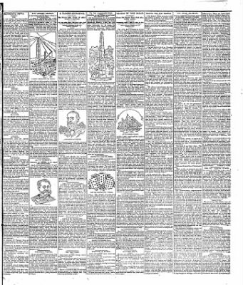 Freeborn County Standard from Albert Lea, Minnesota on June 19, 1895 · Page 7
