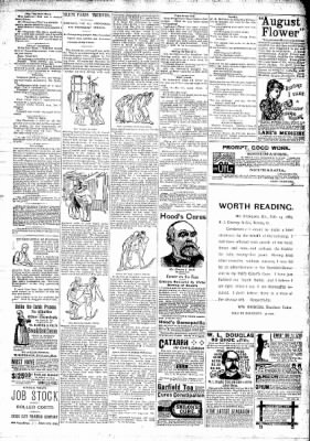 The Independent from Hawarden, Iowa on April 20, 1893 · Page 3