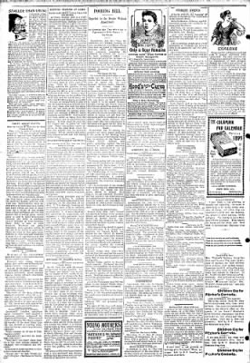 Logansport Pharos-Tribune from Logansport, Indiana on January 23, 1895 · Page 2