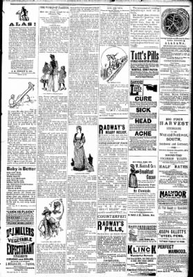 Logansport Pharos-Tribune from Logansport, Indiana on February 10, 1891 · Page 7