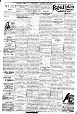 Logansport Pharos-Tribune from Logansport, Indiana on June 24, 1896 · Page 4