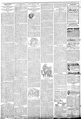 Logansport Pharos-Tribune from Logansport, Indiana on February 5, 1895 · Page 6