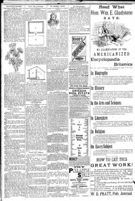 Logansport Pharos-Tribune from Logansport, Indiana on February 18, 1891 · Page 2