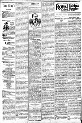 Logansport Pharos-Tribune from Logansport, Indiana on July 10, 1896 · Page 4