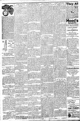 Logansport Pharos-Tribune from Logansport, Indiana on July 16, 1896 · Page 2